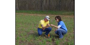 Soil Testing to Reduce Agricultural Nutrient Delivery (STRAND) will help farmers make informed decisions about nutrient applications to cropland based on soil testing, which will ultimately help improve the water quality of Lake Erie. (Courtesy of USDA via Flickr)