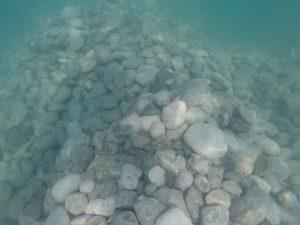 Limestone cobble on the bottom of a lake