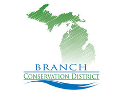 Branch CD Logo