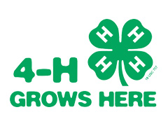 MSU Extension 4H logo