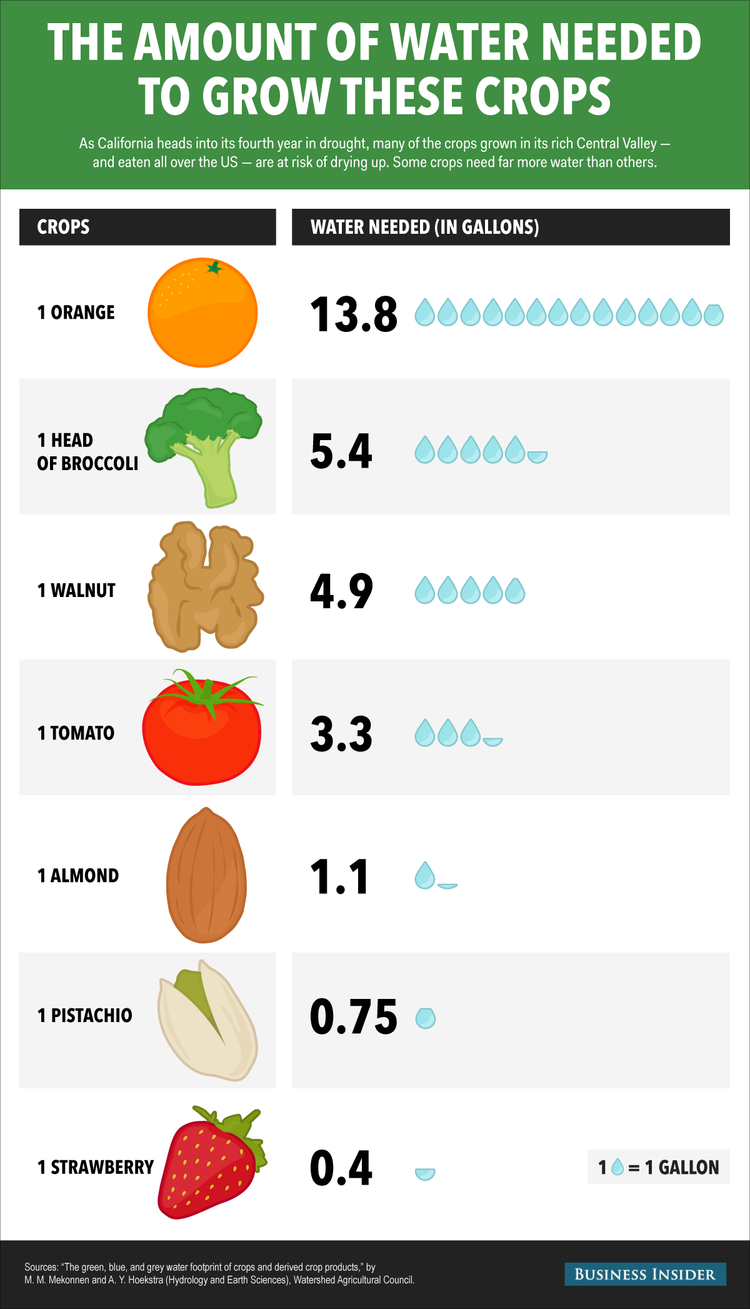 Infographic representing the amount of water needed to grow crops